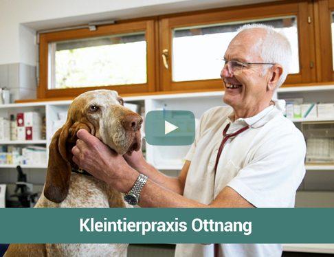 Kleintierpraxis Ottnang_Web Werbeclip
